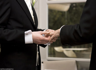 Gay Marriage Opposition Brief Filed