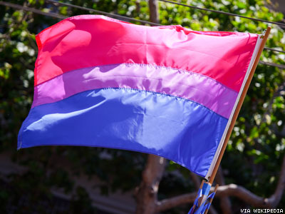 Bisexual Flag X400 0
