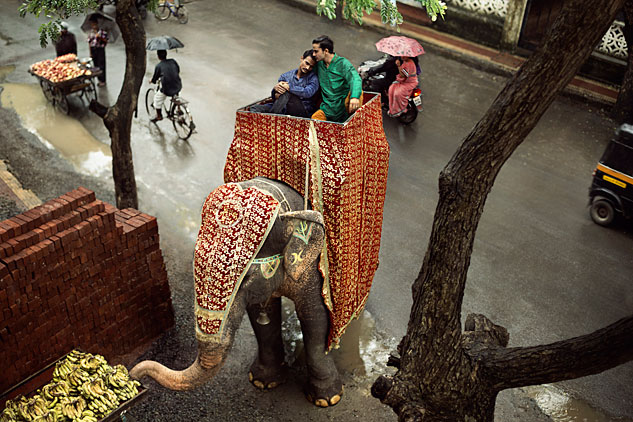 IndianGayElephantx633 0