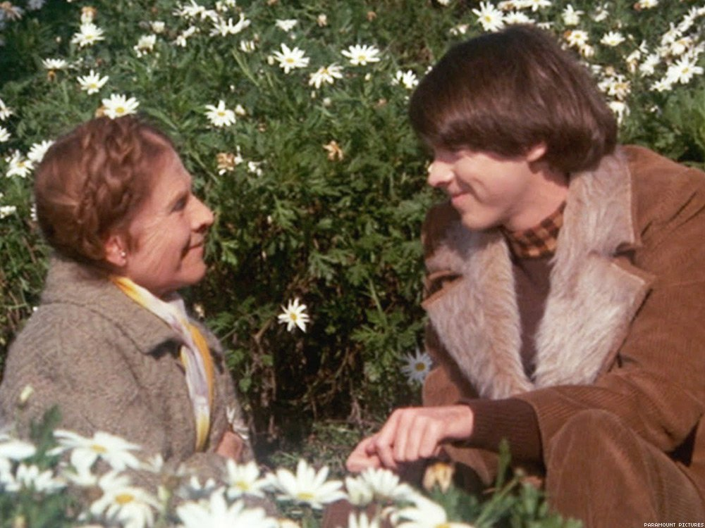 06 Harold And Maude Paramount Pictures