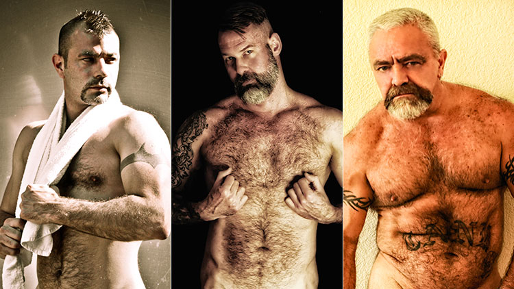Gay hairy dads
