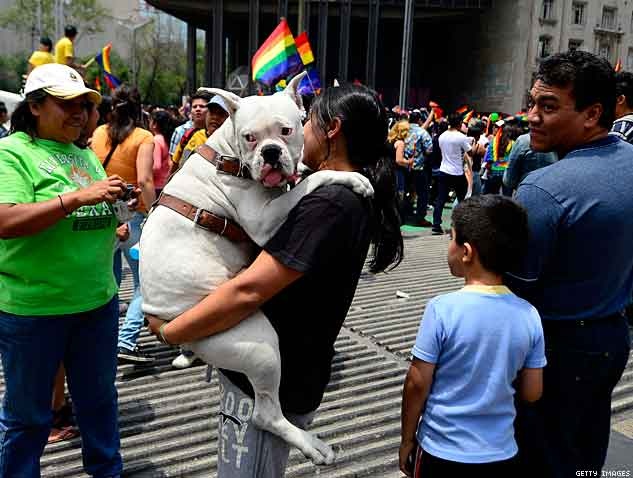 A woman carries her dog during the Gay Pride Parade at Reforma Avenue in Mexico City X633 | ADVOCATE.COM