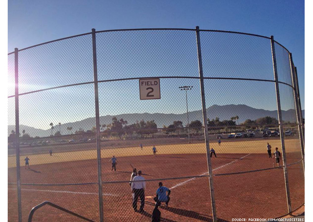 Phoenix Cactus Cities Softball League X633