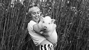 Miley Cyrus to Help Homeless, LGBT Youth