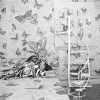 Butterfly Bedroom Telephone, East Meadow, NY, June 1975
