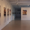 The gallery show