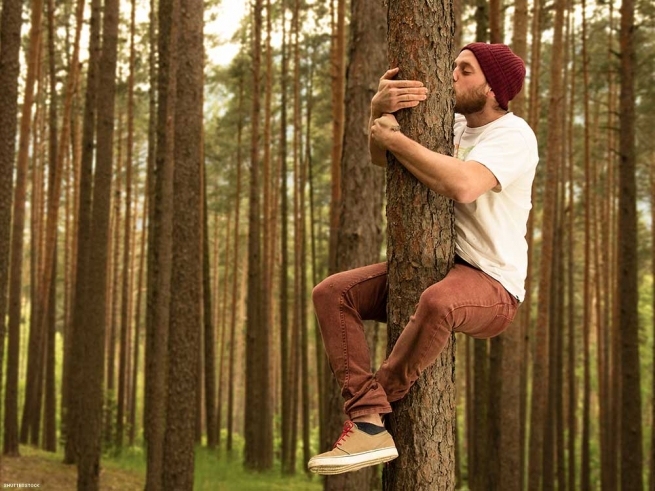 2. Sexual attraction to trees.