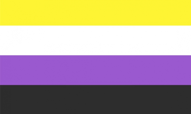 Non Binary Flag