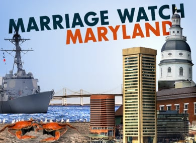 LAST-MINUTE WIN: MARYLAND HOUSE PASSES MARRIAGE