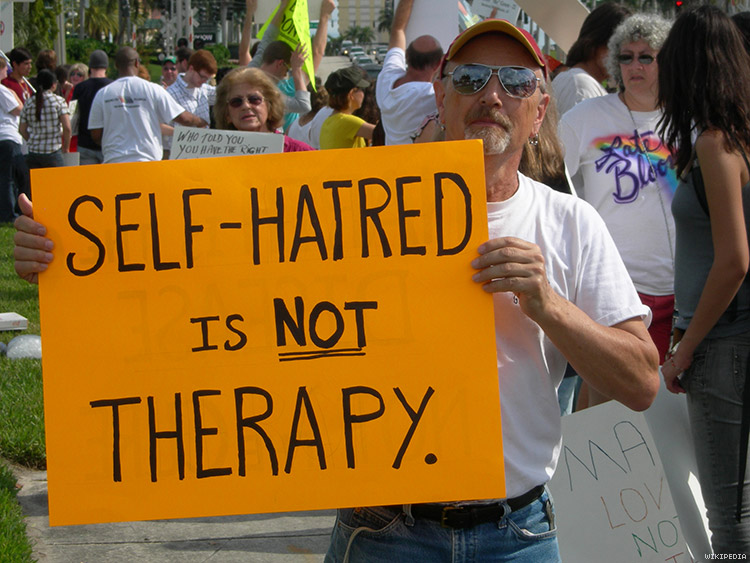gay cure therapy