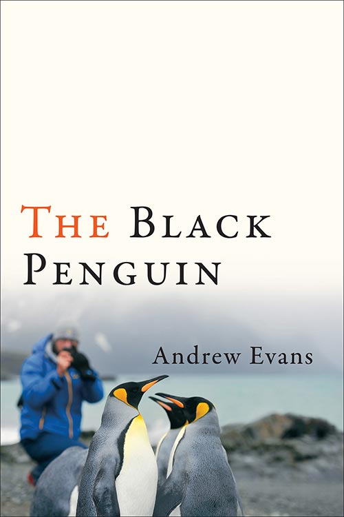 09 The Black Penguin By Andre Evans