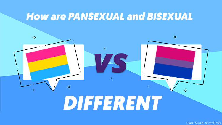 What S The Difference Between Pansexual And Bisexual