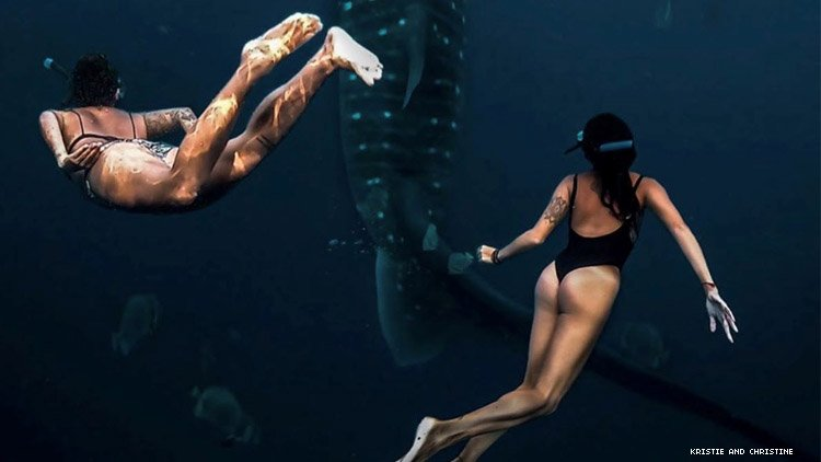 Two women swimming in ocean with sea life