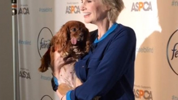 Jane Lynch's Dog Obsession Is Beautiful