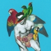 Man With Parrots