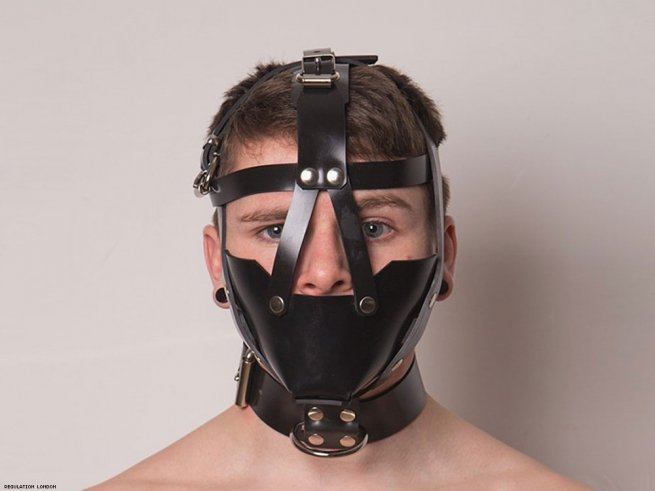 25. Head harness and muzzle.