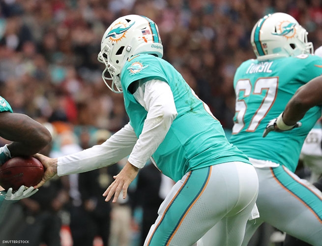 The Miami Dolphins